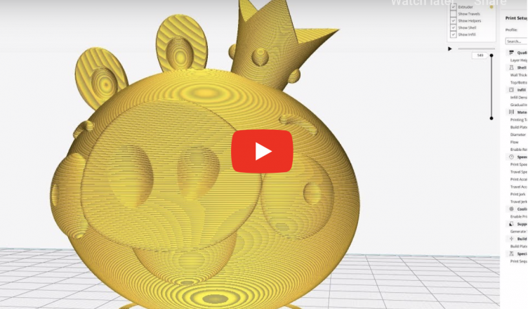 Draft Speed 3D print of King Angry Birds Pig CR 10 mini